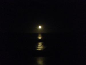 nite moon